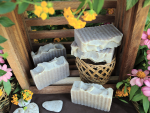 Cinnamon Oat Soap Bar